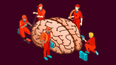Neuromodulation-Cerebrm-Oct-2019.jpg