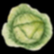 Eat Your Iceberg Lettuce