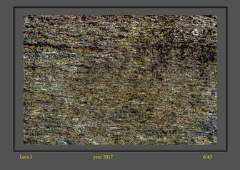 stone buch-4.jpg