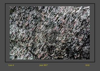 stone buch-6.jpg