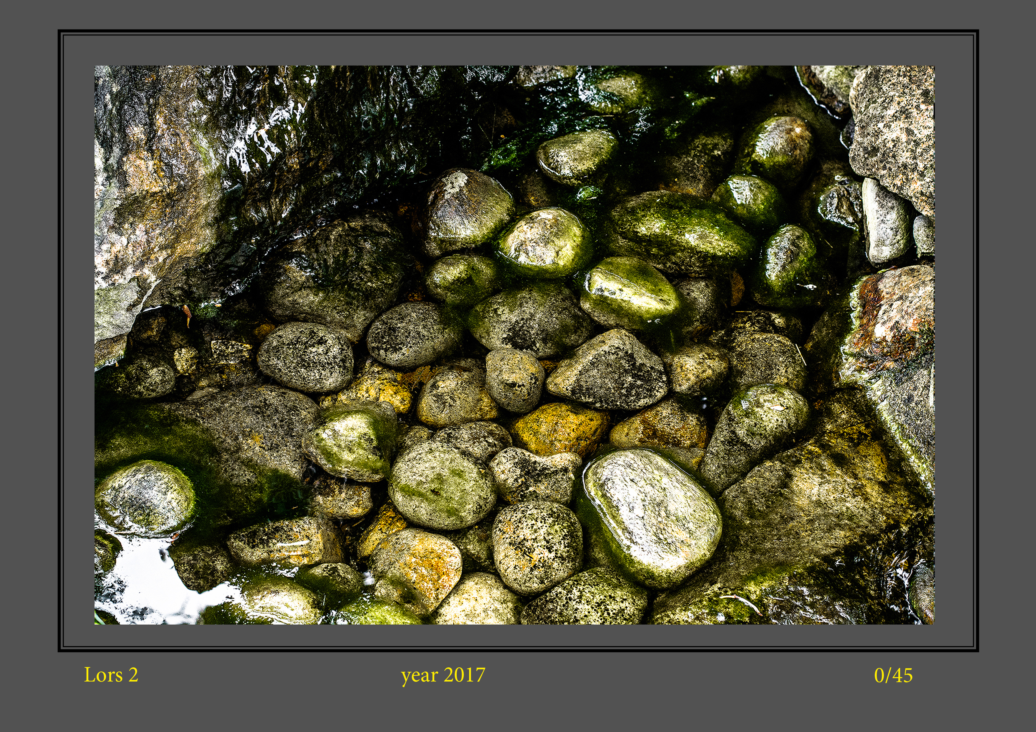 stone buch-11