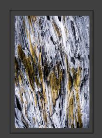 stone buch-17.jpg