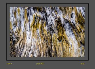 stone buch-5.jpg