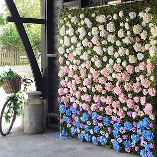 Isabella Flower Wall For Hire