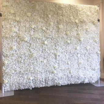 Cream White Flower Wall