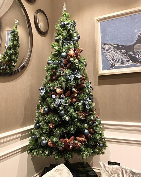 Scottish Christmas Tree