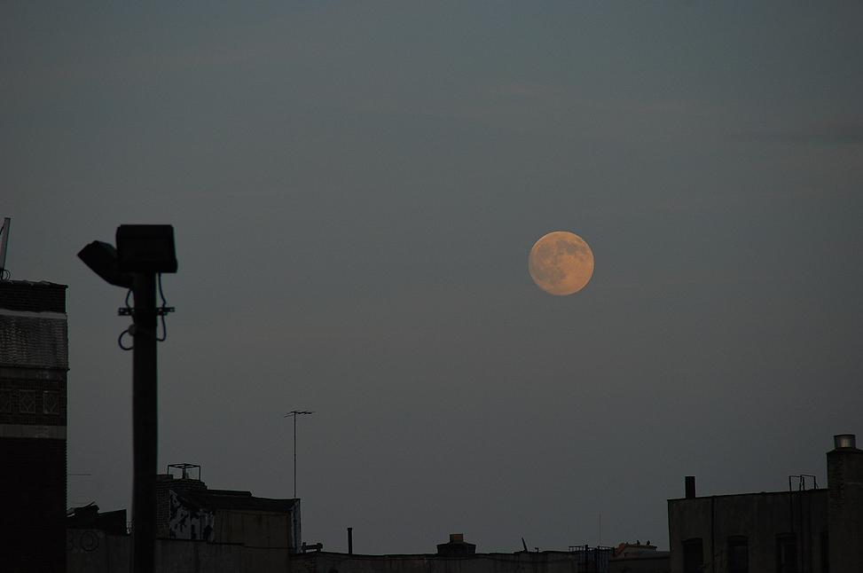 Sunset Moon Full.png