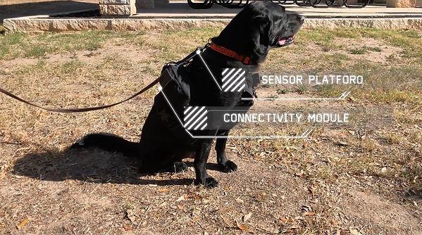 sensors_vaporedge.jpg