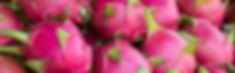 Dragon_Fruit_KYC_Featured_Image.jpg