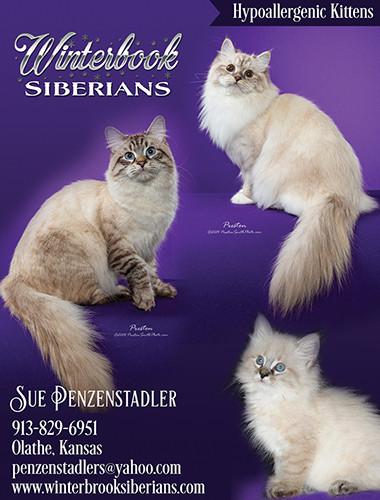 Winterbrook Siberians PROOF2.jpg