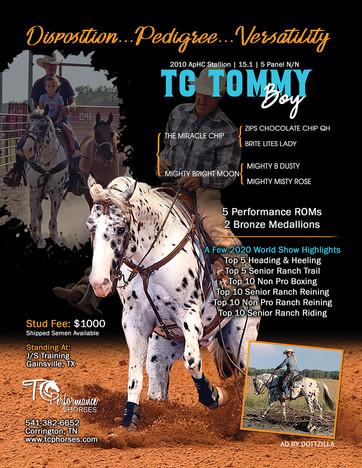 TommyBoy_2021_WEB.jpg
