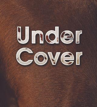 UnderCover.jpg