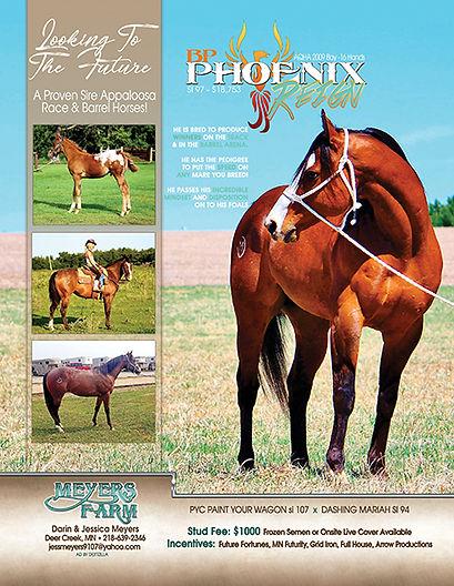 BP Phoenix Reign_AppsNow2020.jpg
