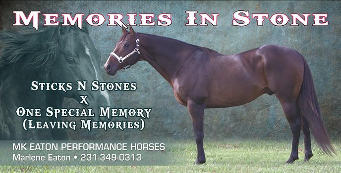 MemoriesInStone_Banner.jpg