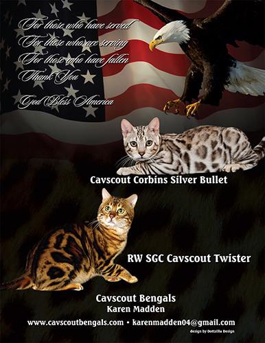 CavScoutBengals.jpg