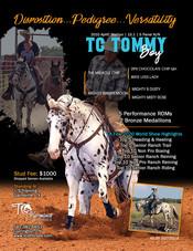 TC Tommy Boy