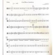 god bless america - viola.jpg
