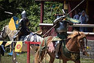 Renaissance Fair.jpg