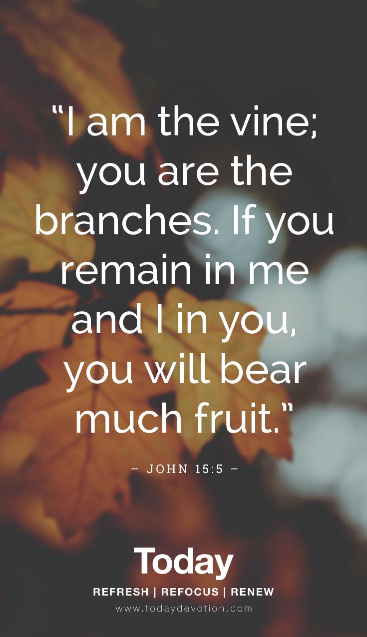 John 15_5