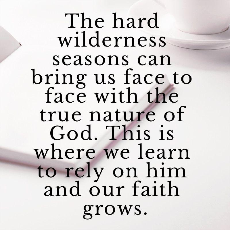 Sometimes the hard wilderness seasons ma