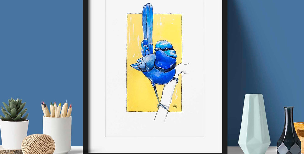 """Brilliant Blue Wren"" 