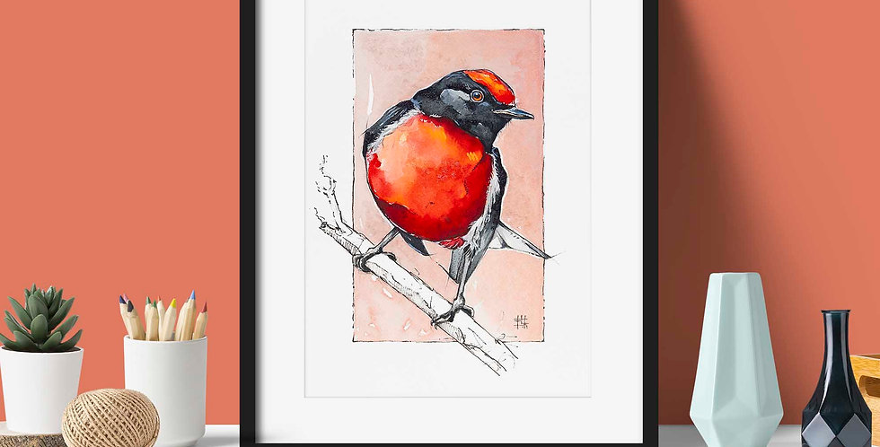 """Red Robin Visits"" | Fine Art Print"