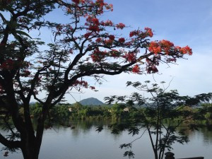 Hue, an informative national scientific meeting and a city of ancient beauty