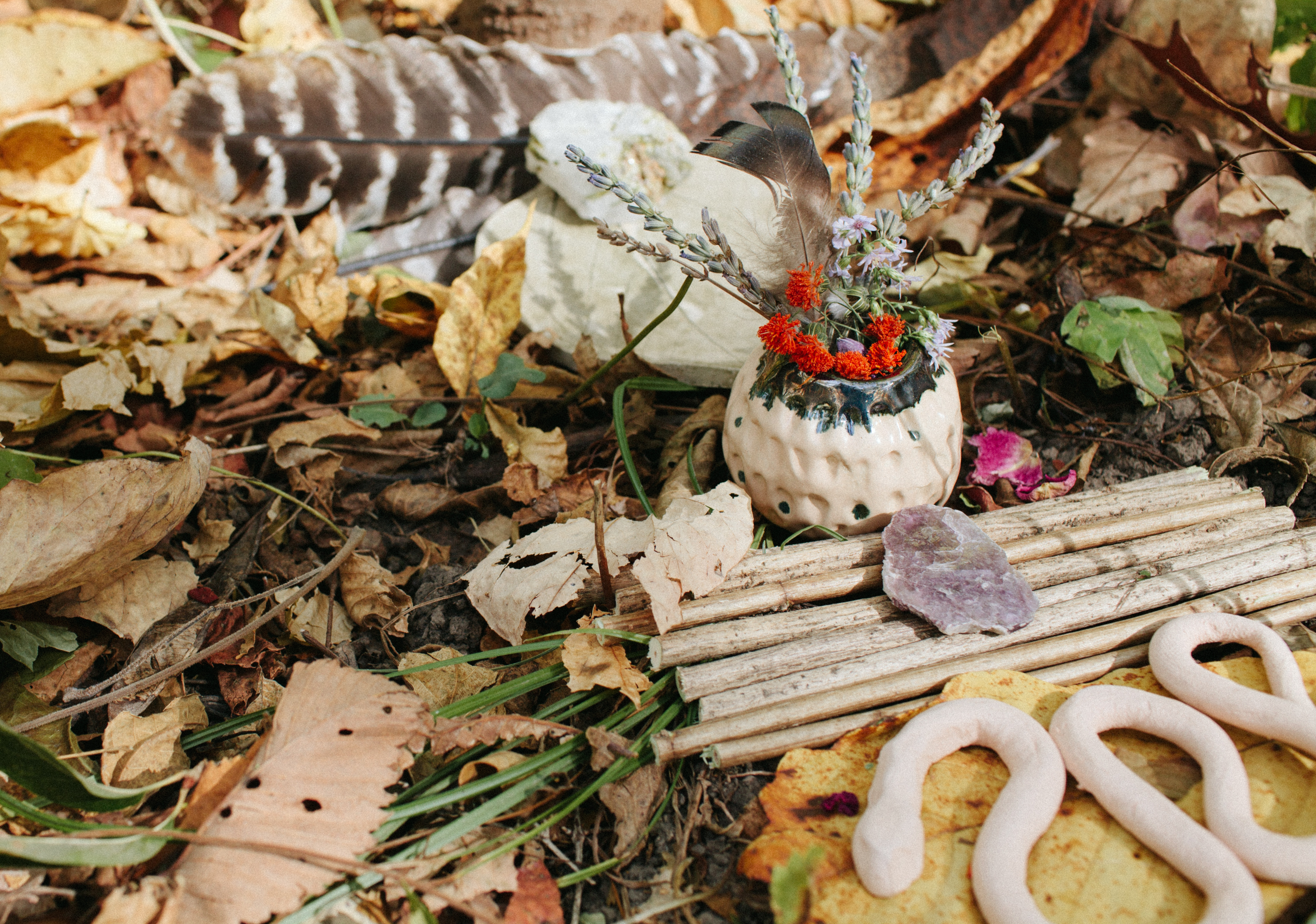 Forest Bathing: Meditation + Creation