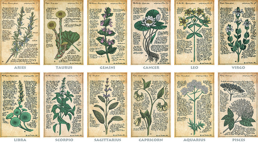 Medical Astrology for Herbalists
