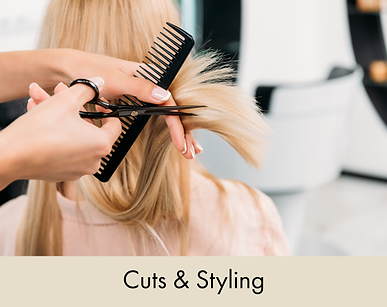 Cuts & Styling.png