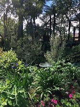 PJ garden.jpg