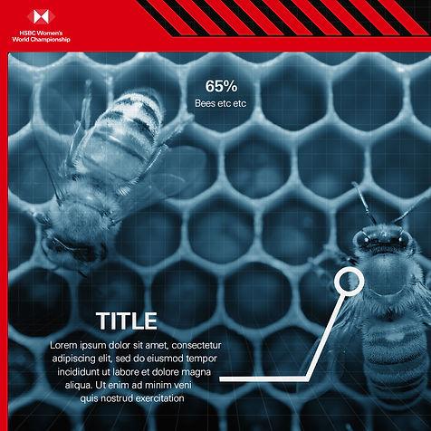 bees_example.jpg