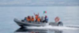 azores whale watching - terceira angra do heroismo - açores observação de cetáceos - ocean emotion