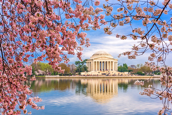 Washington, DC at the Tidal Basin and Jefferson Memorial during spring..jpg