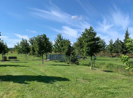 Aperçu de l'arboretum