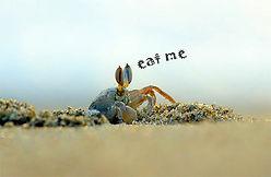 eat_me.jpg