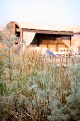 Arava Israël Nia Yoga retreat