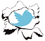 our twitter link icon