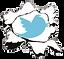 Twitter-Burst.png