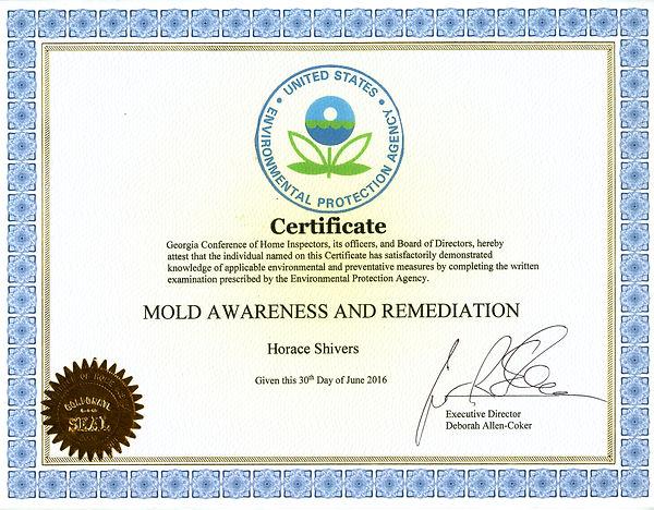 Mold Awareness.jpg