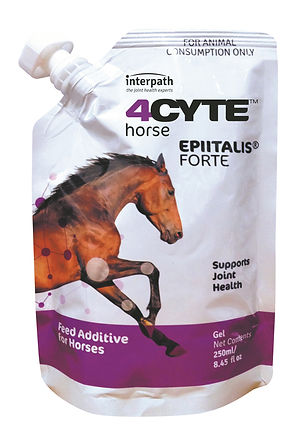 4CYTE Horse 250ml.jpg