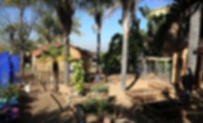 Midrand Montessori - The Montessori Environment - Nature and Reality