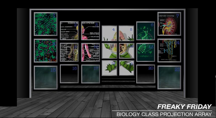 FF Biology Projection_edited.jpg