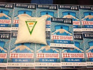 Presentado el cartel del campeonato de Andalucía de natación adaptada FANDDI