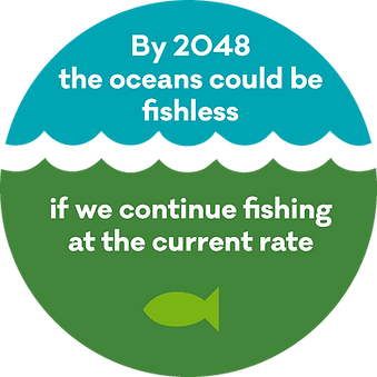website_cpba_infographic_overfishing.png