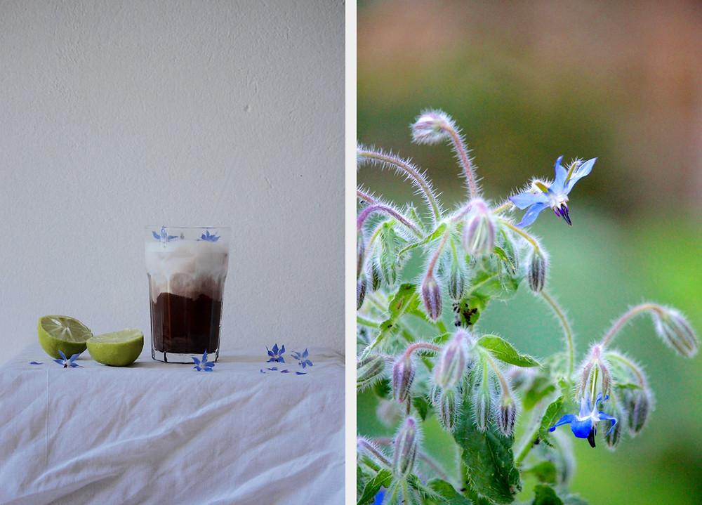 sistersjunction frozen lime hot chocolate (chocolat chaud glacé au citron vert)