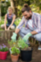 bigstock-Male-gardener-planting-with-be-