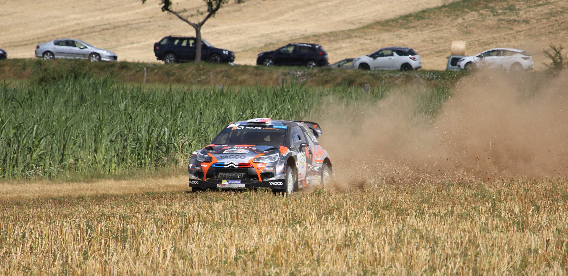 DS3 WRC (5).jpg