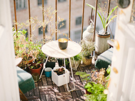 Create Your Own Sit Spot - 7 Ways to Connect With Nature at Home