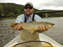 Fly rod brown
